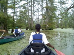 cache river days